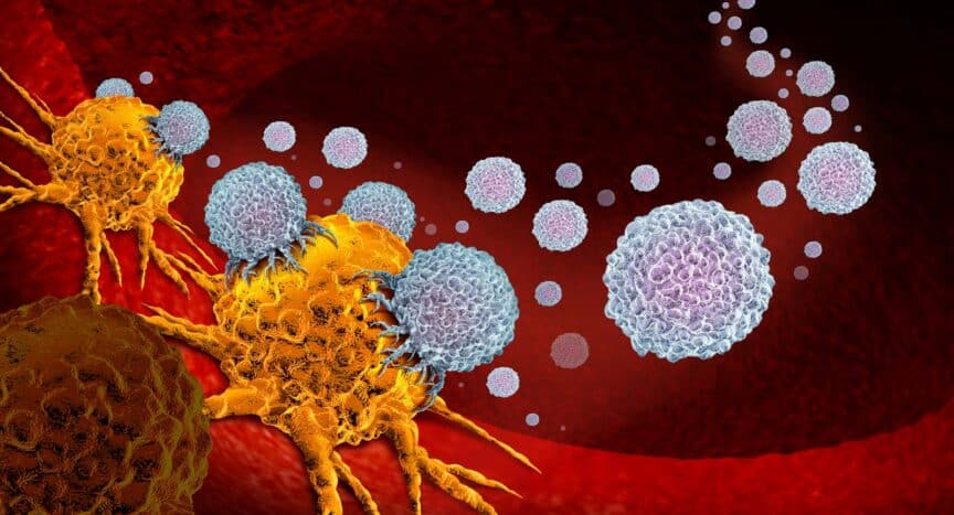 immunotherapy_optimized