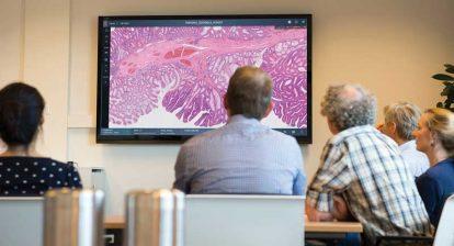Philips digital pathology viewer